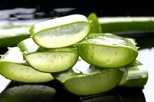 Aloe-Vera-Gel-Benefits[fusion_builder_container hundred_percent=