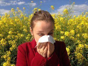 aloe vera para aliviar la alergia