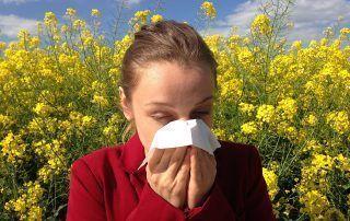 aloe vera para aliviar alergias