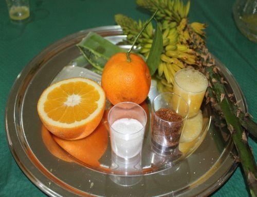 Receta con Aloe vera: zumo de Aloe vera anaranjado