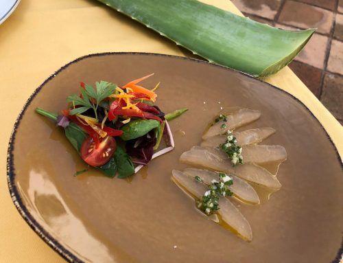 Receta con Aloe vera: falso boquerón de Aloe vera